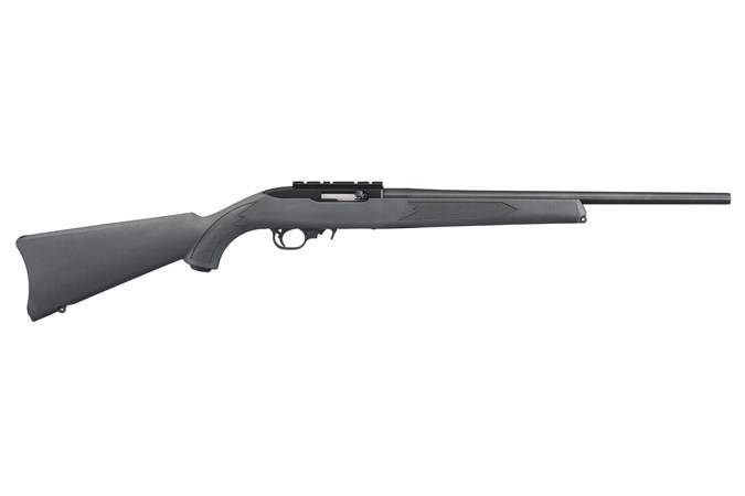 Ruger 10-22 22lr Carbine Charcoal Gray - NEW